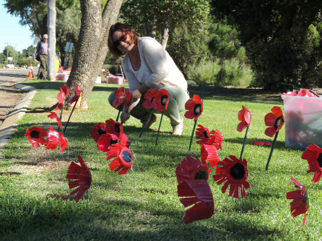 Nadeshka Webb plants poppies made by the students at St Mary's Primary School