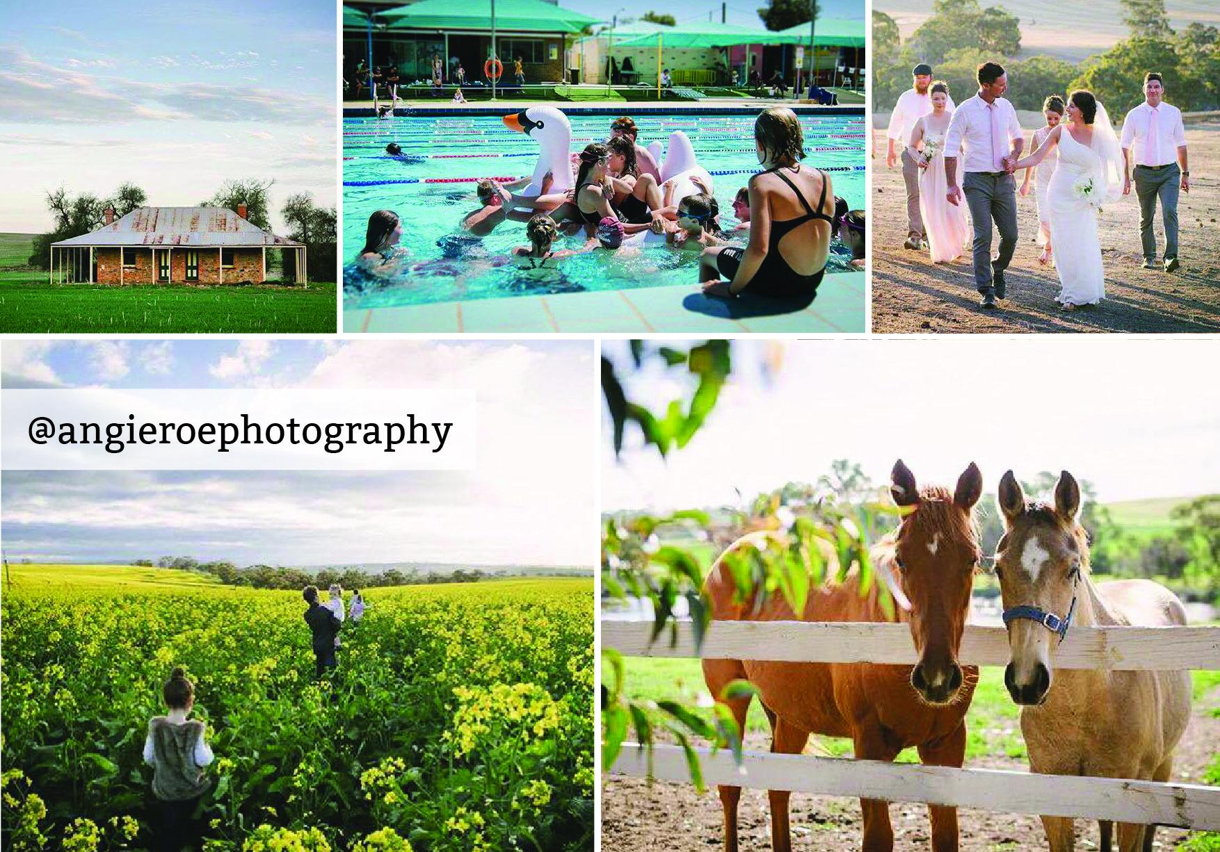 angieroephotography-01