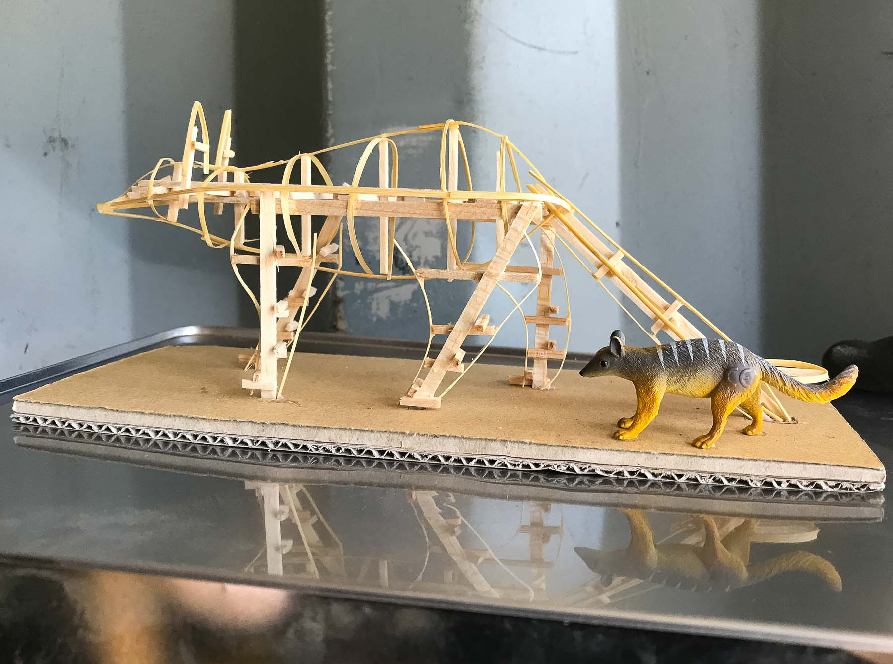 Photo of scale model of numbat sculpture framework. Photo by Caro Telfer.